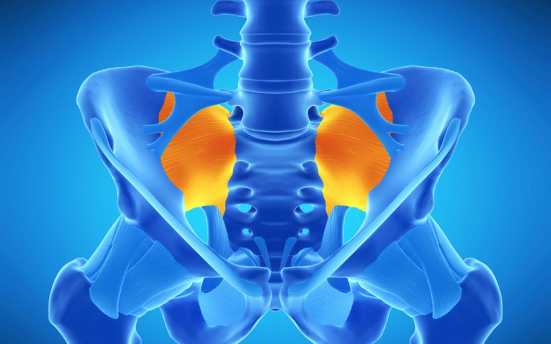 sacroiliac ligament