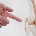 The Key to Strong, Pain-Free Joints: Healthy Chondrocytes