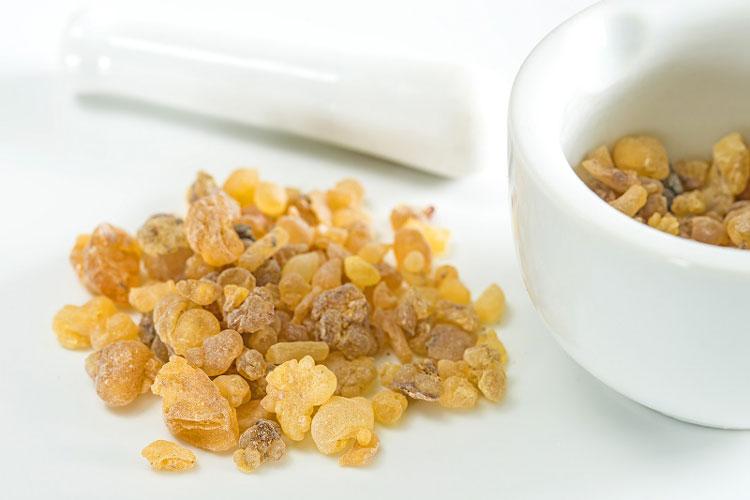 bowellia raisin